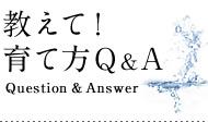 教えて!育て方Q&A