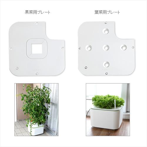 プレートを替えれば、果菜と葉菜の両方栽培できます